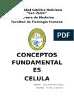 conceptos CElula