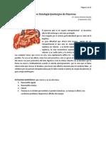 Clase 18 Pancreas Dr Carcamo2011