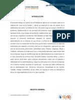 COL1_FUDAMENTO (1)