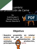 Harina de Lombriz para produccion de Carne