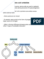 9 Amino Acid Metabolism 2014-2015 Handout