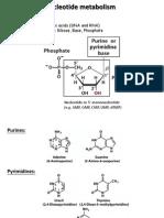 14 Nucleotide Metabolism 2014-2015