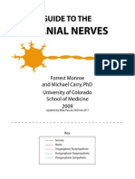 Cranial Nerves Combined (1)