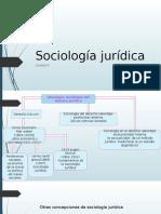 Sociologia Juridica Unidad 3