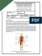 Previo 8. Regulación Del Volumen Urinario