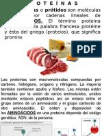 5 Proteinas A