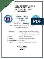 Informe de invertebrados.docx