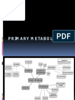 primary metabolism