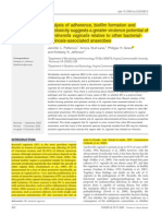 Analisis de Adherencia, Formacion de Pelicula y Citotoxicidad de g. Vaginalis