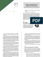 A Dimensão Construtivista Em Jean Piaget