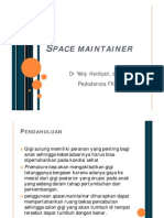 space_maintainer.pdf