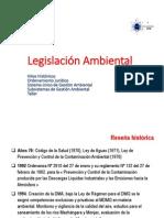 Capitulo III Legislación Ambiental