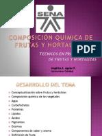 COMPOSICIÓN QUIMICA DE FRUTAS Y HORTALIZAS.pdf