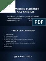 Licuefaccion Flotante Del Gas Natural