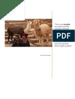 Democratization in Peru
