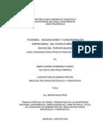 Fusiones, Adquisiciones y Concentracion Empresarial