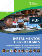 2. b. Instrumentos Curriculares AMEIBA