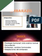 Embarazo- Fisiología usmp