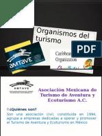Organismos Del Turismo