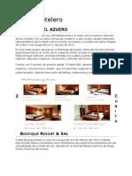 Trabajo de Topicos Sector Hotelero