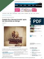 Cadela Fica 'Decepcionada' Após Ser Devolvida Ao Abrigo _ RedeTV! Em Rede Com Você