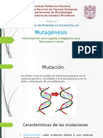 mutagenesis