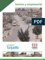 Perfil Economico y Empresarial Tunjuelito