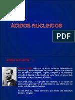 ACIDOS NUCLEICOS..exposicionfinal