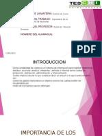 Presentación1 CONTABILIDAD DE COTOS.pptx