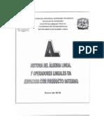Algebra Del Lineal Historia