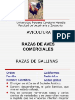 2.CLASE_RAZAS_20152[1]