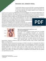 Enfermedades Del Aparato Renal