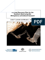 Recovery plan for the southern bent-wing bat