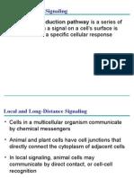 ap bio power point ch. 11
