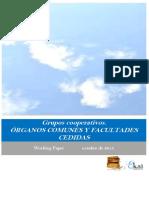 04 Grupos Cooperativos. Órganos Comunes y Facultades Cedidas