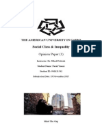 Inequality Opinion Paper