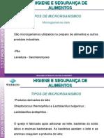 Aula_3_-_Tipos_Microrganismos