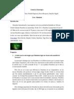 Gerencia Estratégica_caso Heineken
