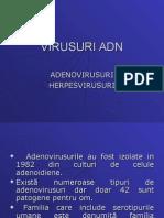 Adenovirus Uri