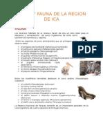 Flora y Fauna de La Region de Ica