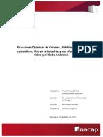 Informe Cetonas, Aldehidos y Ácidos Carb. (Paula Droguett y Daniela Mallea)
