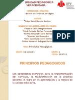 Principios Pedagògicos