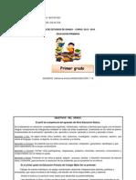 Plan Anual Primer Grado 2014 2015