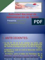 Agustín, Anati 2003