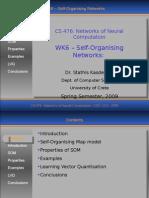 Networks of Neural Computation  Self-Organising Networks