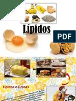 CHARLA LIPIDOS.pdf