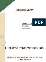 Public Sector Enterprises (2)