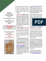 Concorso tartufo PDF.pdf