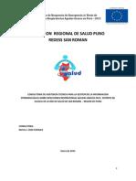 Direccion regional de salud.pdf