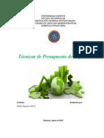 TÉCNICAS DE PRESUPUESTO DE CAPITAL